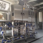dog-on-brewery-with-fermentors-in-background